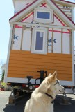 Everyone needs a helper, and Nuna the howling dog namesake is always there to lend a hand.