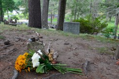 Burial place of Henry David Thoreau, located at Author's Ridge in Sleepy Hollow Cemetery.