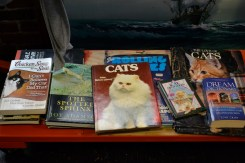 Got cats? SMC has feline fervor galore.