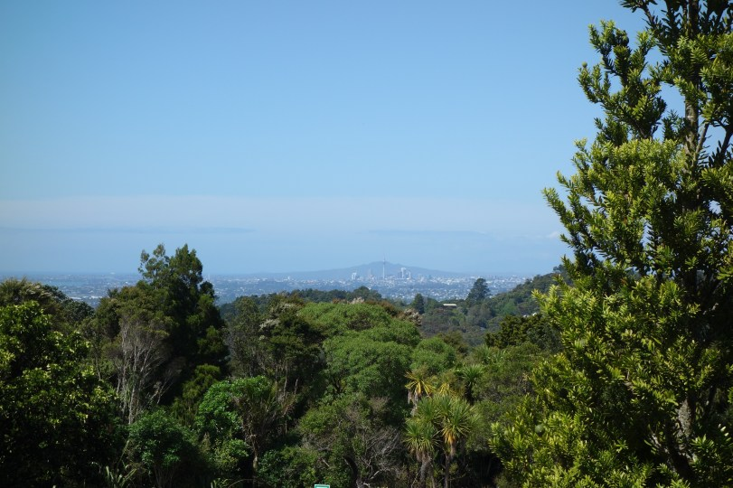 The city centre in the distance from the Waitakere ranges
