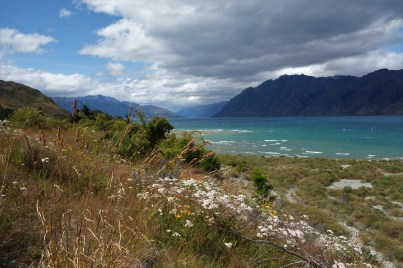 Lake Hawea - en route to the west coast from Wanaka
