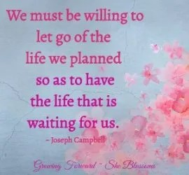 What to Remember When You're Left Behind – Blossom Tip 60