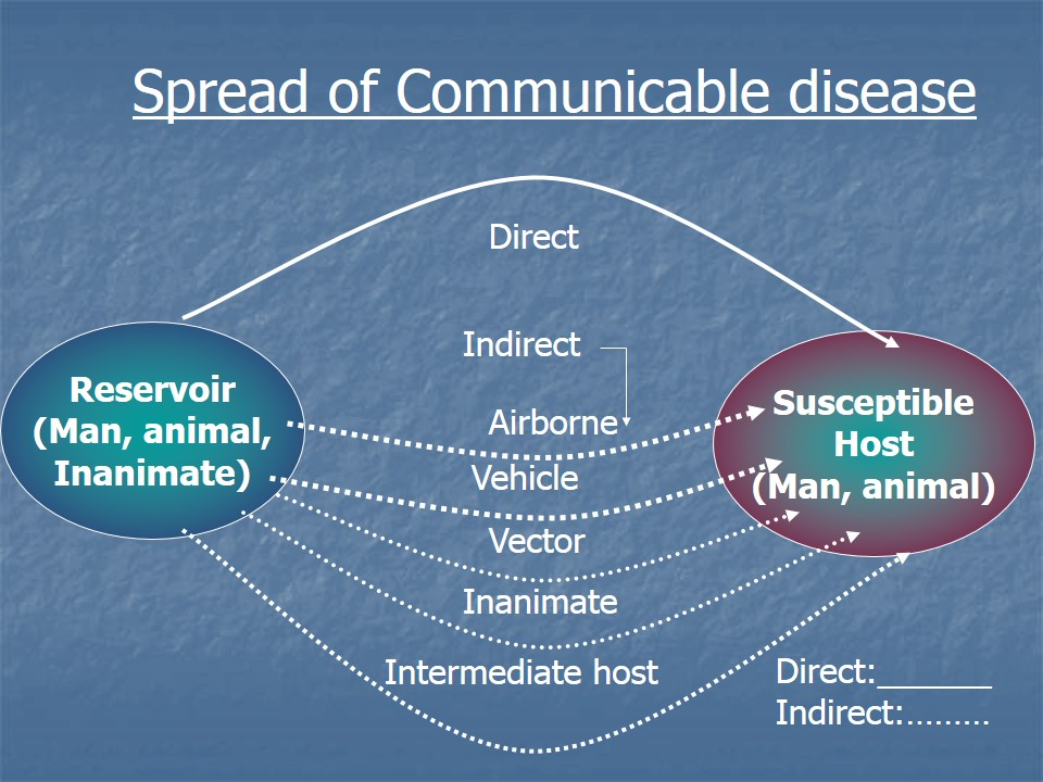 Image result for spread of disease diagram