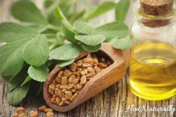 Fenugreek in hair care – rince, mask, spray