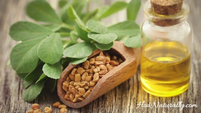 Fenugreek in hair care – rince, mask, spray