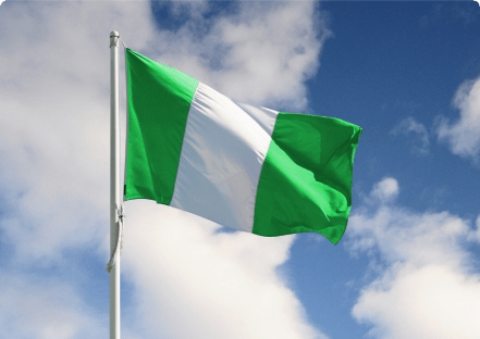 Image result for nigerians flag