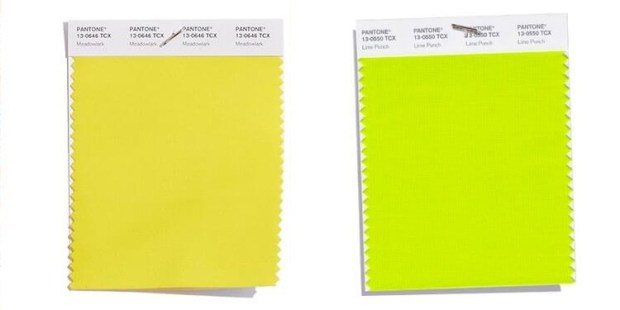 Yellow: Meadowlark and Lime Punch