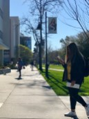 California State University San Jose