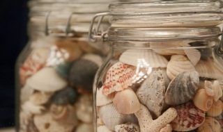Jar of Shells