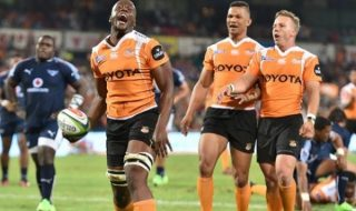 Cheetahs focused on Super Rugby survival