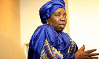 Schools Must Teach Kids To Be Patriotic - Dlamini-Zuma