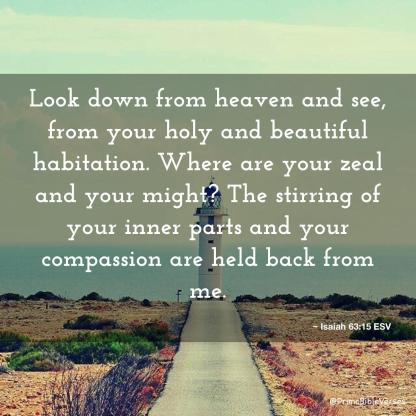 """Daily readings and Thoughts for July 7th. """"LOOK DOWN FROM HEAVEN AND SEE"""""""