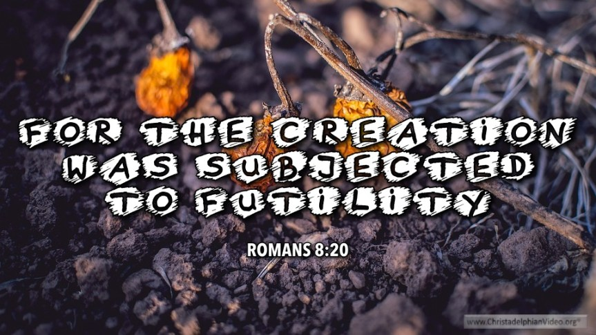 """Thought for January 30th. """"THE CREATION WAS SUBJECTED TO FUTILITY"""""""