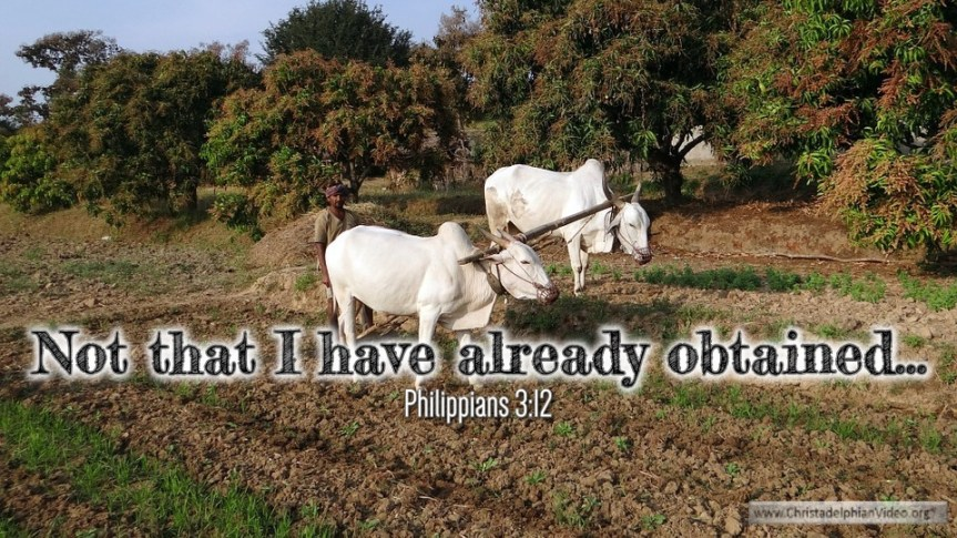 """Thought for April 9th. """"NOT THAT I HAVE ALREADY OBTAINED … """""""