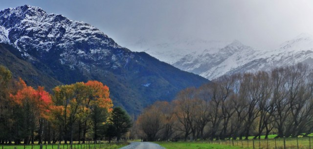 Mt Aspiring National Park New Zealand