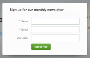 Preview of Campaign Monitor Subscribe Button