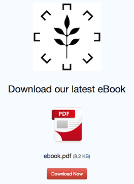 Customized download page