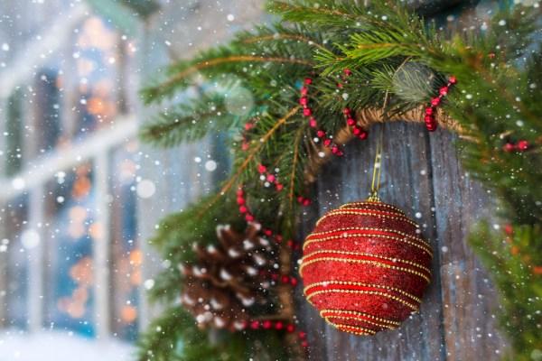 ornamente din brad