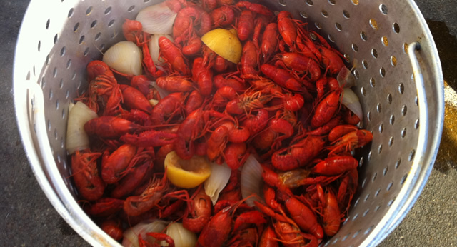 cook crawfish