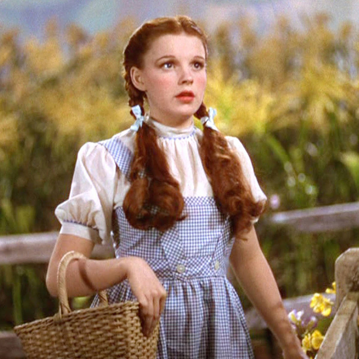 Image result for dorothy