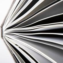 book a blog, repurpose blog posts, publish a book