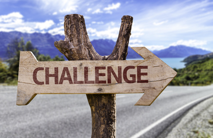 Take the Blog-a-Book Challenge