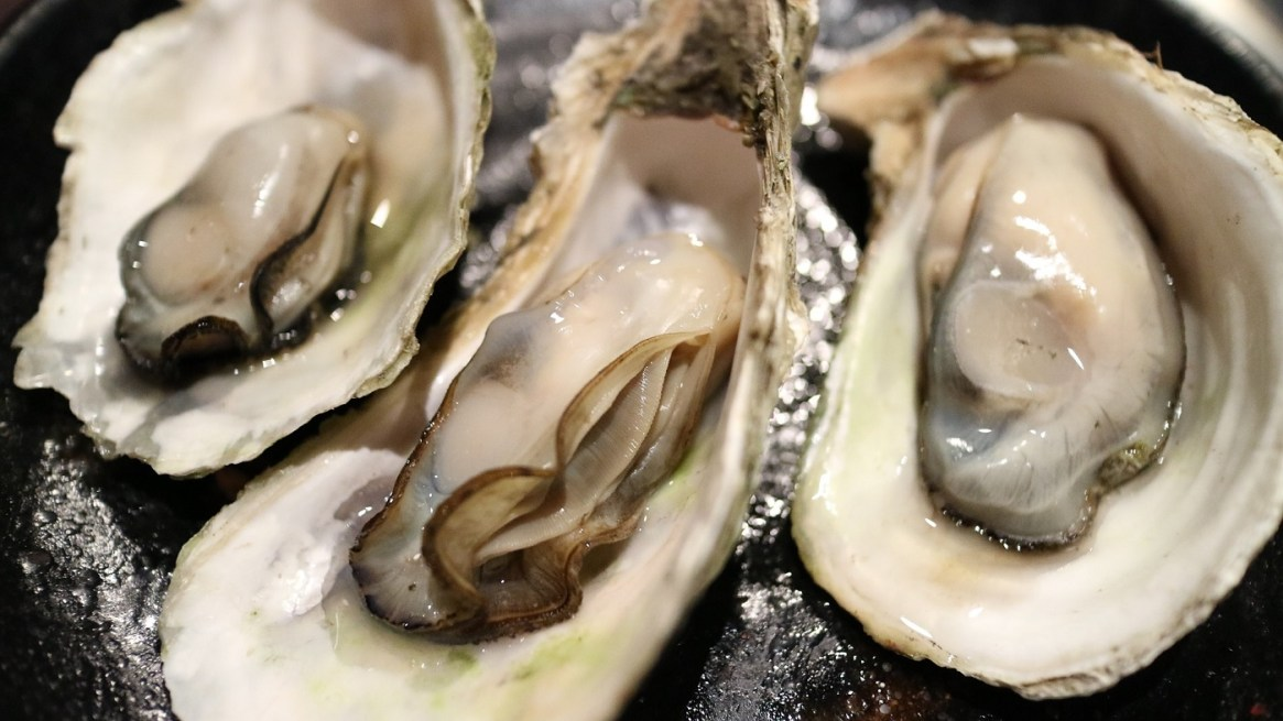 Oysters Iron Food Source