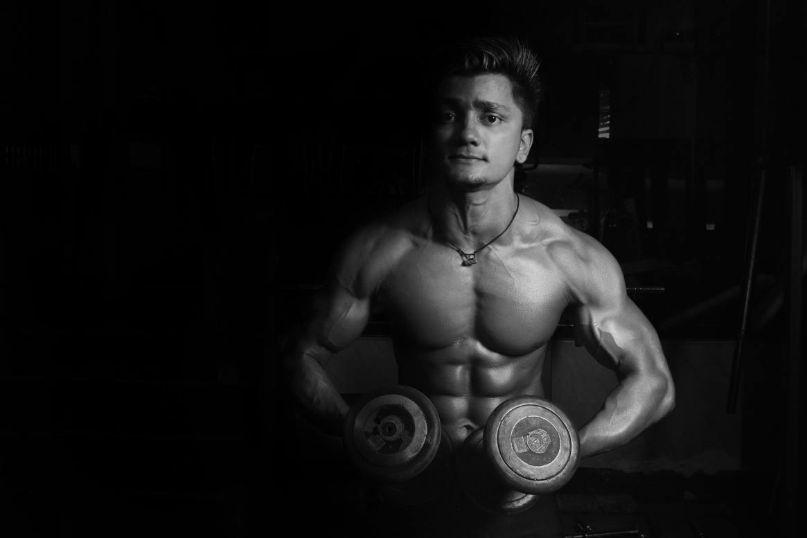 proteins and muscle growth