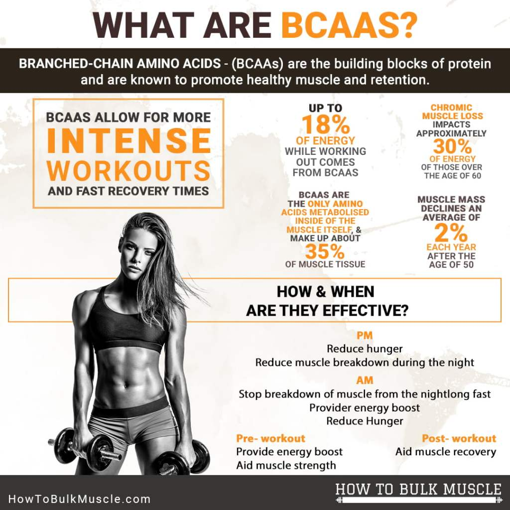 What are BCAAs