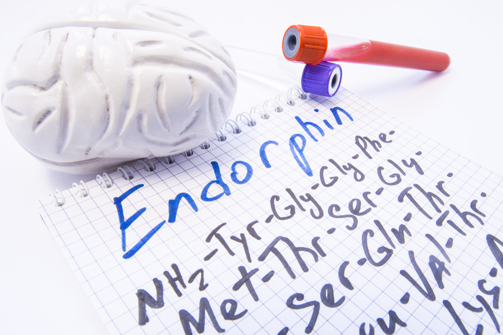 Endorphin Neurotransmitter