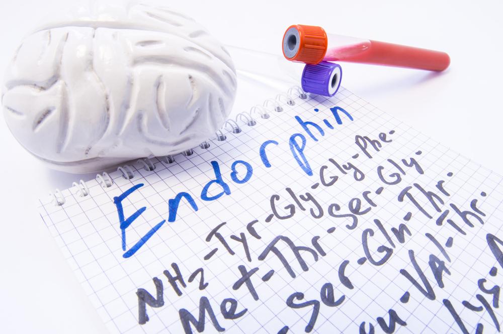 Endorphin Neurotransmitter