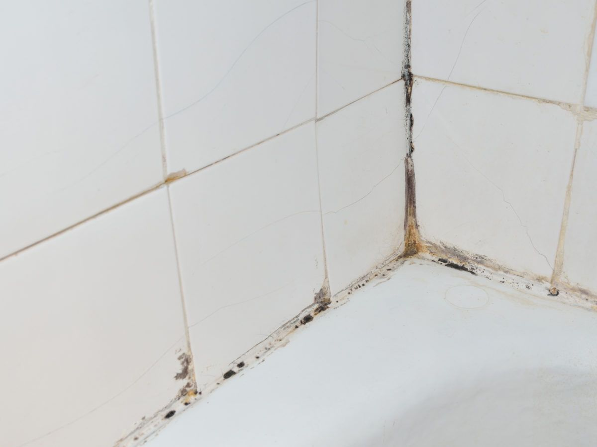 how to clean mildew