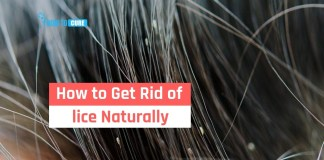 natural remedies to get rid of lice naturally