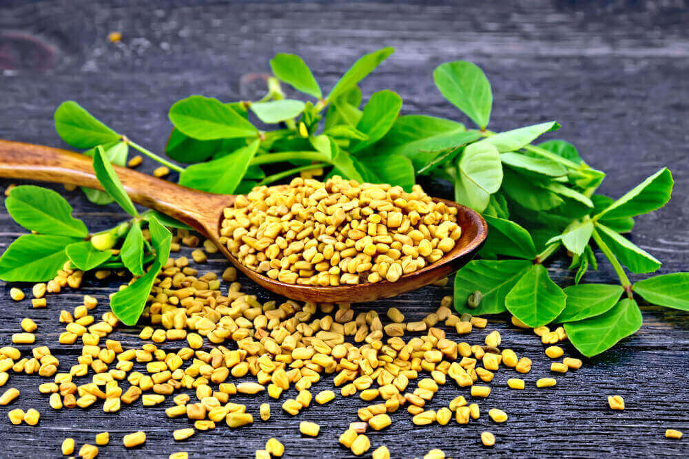 Fenugreek Seeds for hair loss