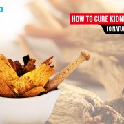 kidney cancer treatment