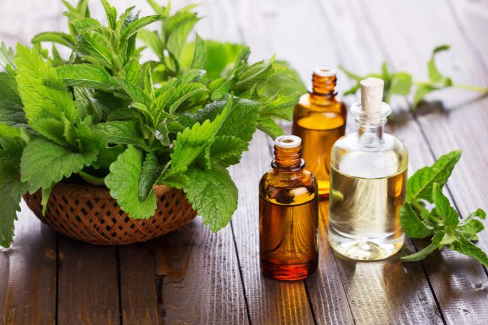 Oil of Peppermint for headaches