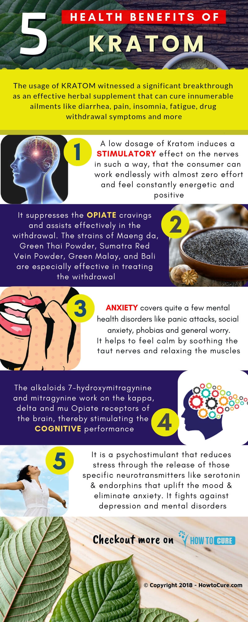 kratom benefits - infographic