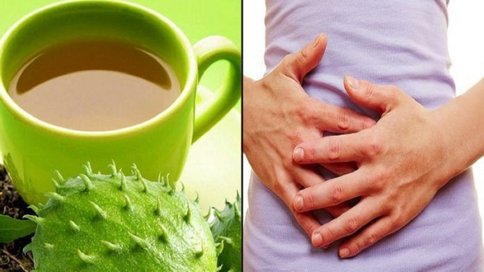 soursop for maintenance of gastrointestinal health