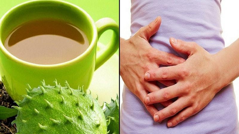 soursop for maintenance of gastrointestinal health