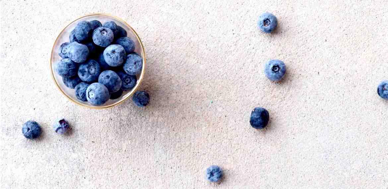 blueberries for bloodsugar