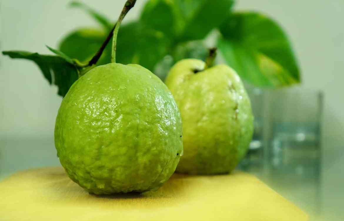 guava for diabetes or blood sugar
