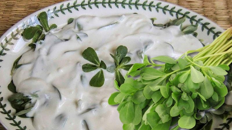 purslane and yogurt salad