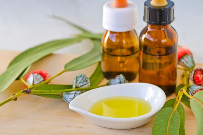 get relief from allergies with eucalyptus oil
