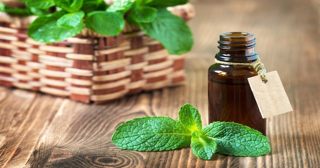 peppermint essential oil for fever
