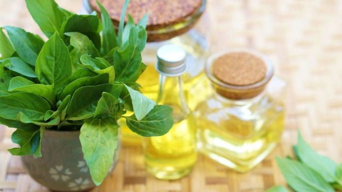 sweet basil essential oil for skin tags