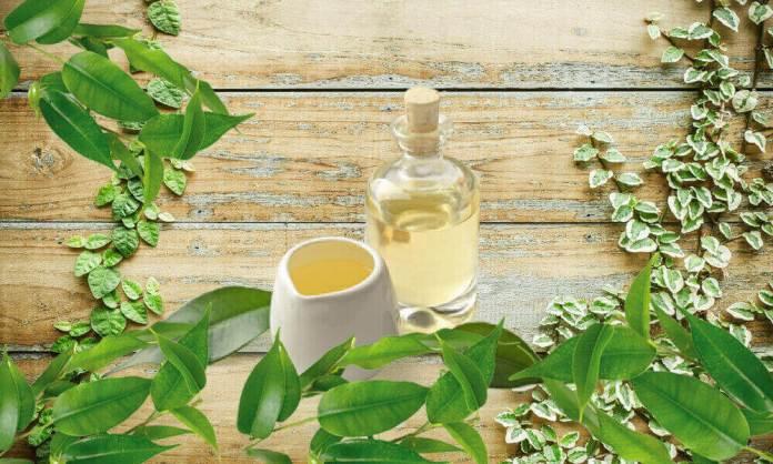 tea tree oil for headaches
