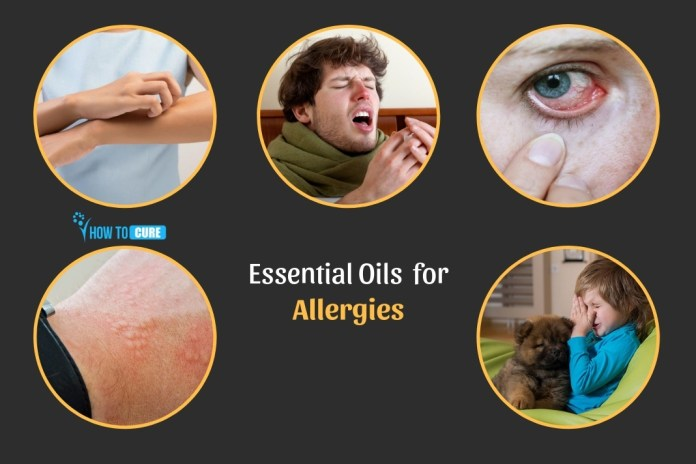 wondrous essential oils