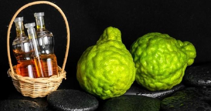 bergamot essential oil for uti