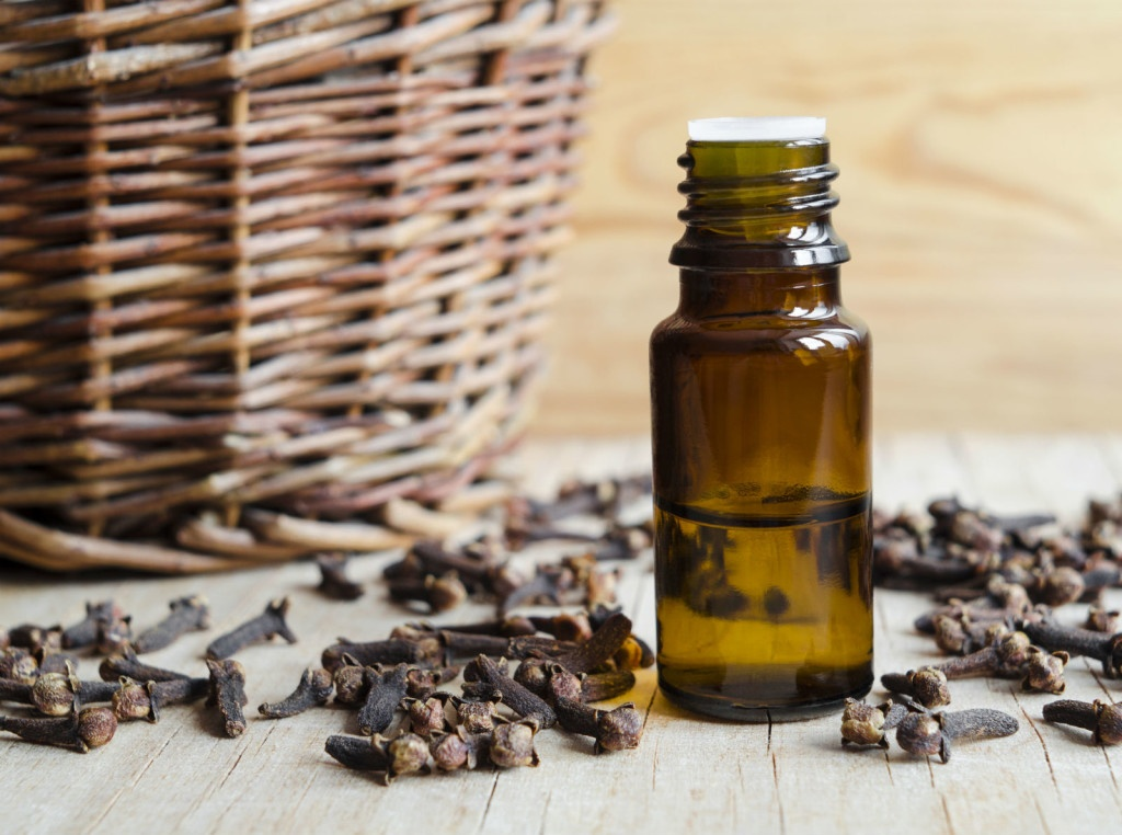 clove oil for teething