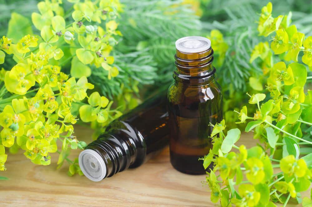 cypress essential oil for vertigo